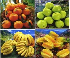 专营台湾水果运送到大陆